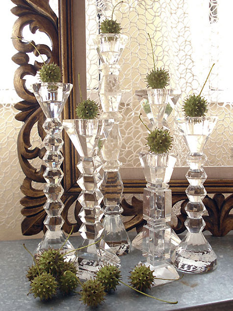 Seed pods and candlesticks